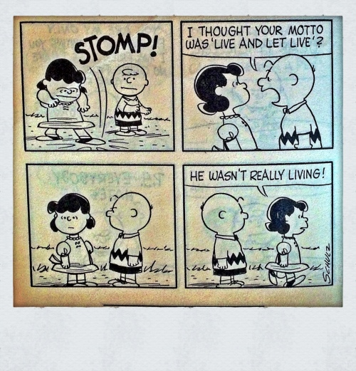Steven Colby Potter Peanuts Charlie Brown, stomp